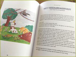 kik verhalenbundel boek verhaal het verjaardagsfeest